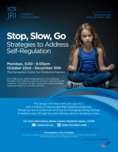 Stop, Slow, Go: Strategies to Address Self-Regulation @ Saint Anne's Hospital: The Fernandes Center for Children & Families | Fall River | Massachusetts | United States